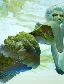 10 unglaubliche Kunstwerke aus Gemüse