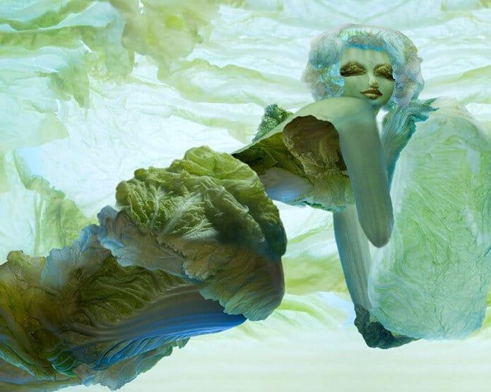 Kunstwerke aus Gemüse