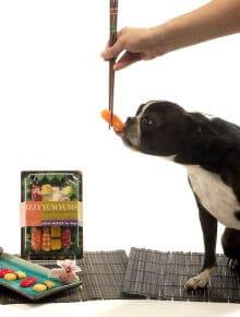 Die 10 verrücktesten Hundeaccessoires