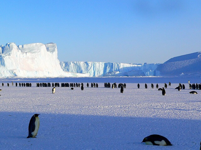 Neue Horizonte erschließen – extreme Abenteuerlust erleben: die Antarktis