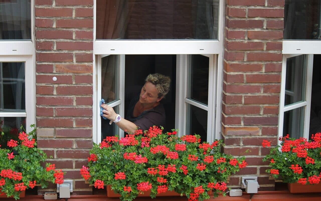 10 tolle Tipps für saubere Fenster – so sorgen Sie für perfekte Sauberkeit