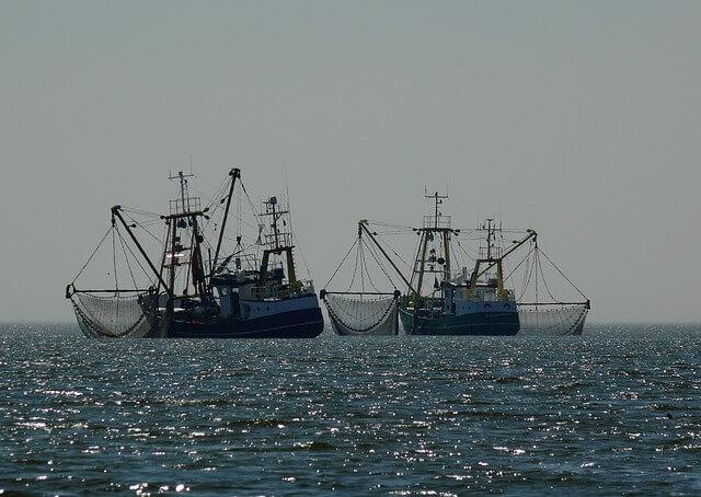 Fischen, Meer