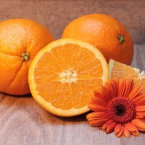 Die Top 10 der wichtigsten Vitamine
