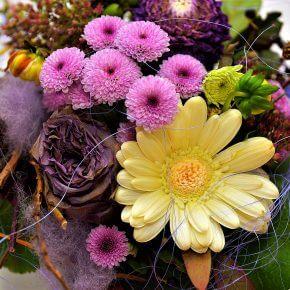 Zehn beliebte Schnittblumen zum Verschenken