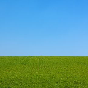 Die Top 10 des Rasenpflege-Equipments