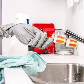 Reinigung des Haushaltes mit einem Dampfreiniger im Test