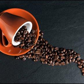 Die teuersten Kaffeesorten der Welt